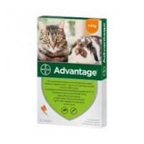 Advantage-40-macska-kis-0,4ml-a-u-v-4x